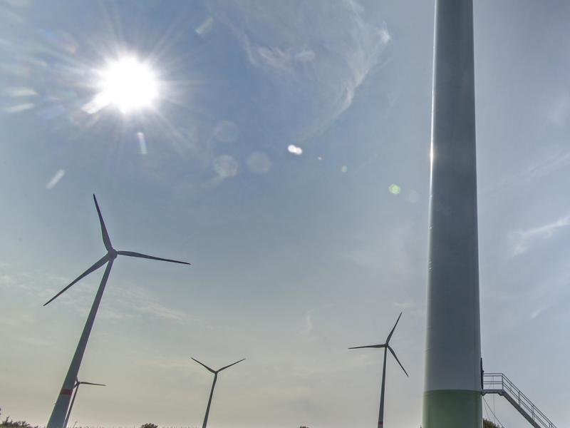 Windfarm Weijerswold
